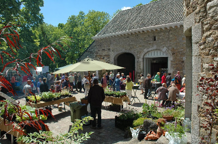 Photo de la Fête des Plantes